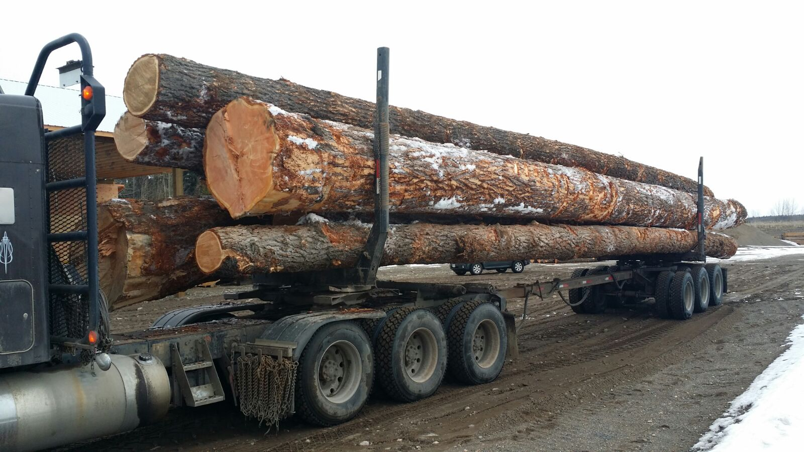 logs being transported